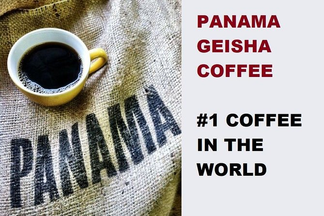 Private Panama Canal - Miraflores Locks, City Tour and a taste of Geisha Coffee.