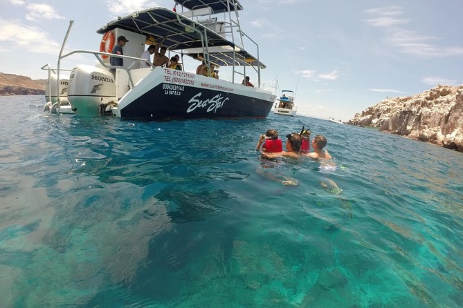 Snorkeling Adventure at Espiritu Santo Island National Park photo 13