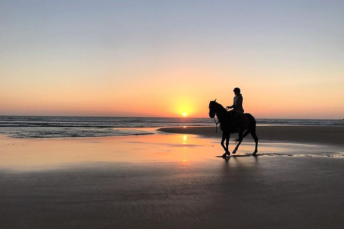 Horse ride at sunset 1 hour