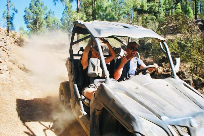 Buggy Trip Volcano Teide By Day in TEIDE NATIONAL PARK photo 7