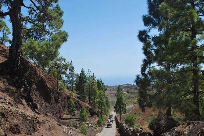 Buggy Trip Volcano Teide By Day in TEIDE NATIONAL PARK photo 6