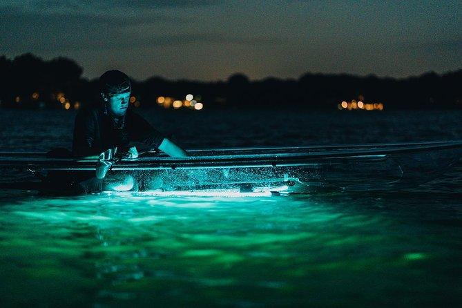 Clear Kayak Glow in the Dark Tour Through Winter Park