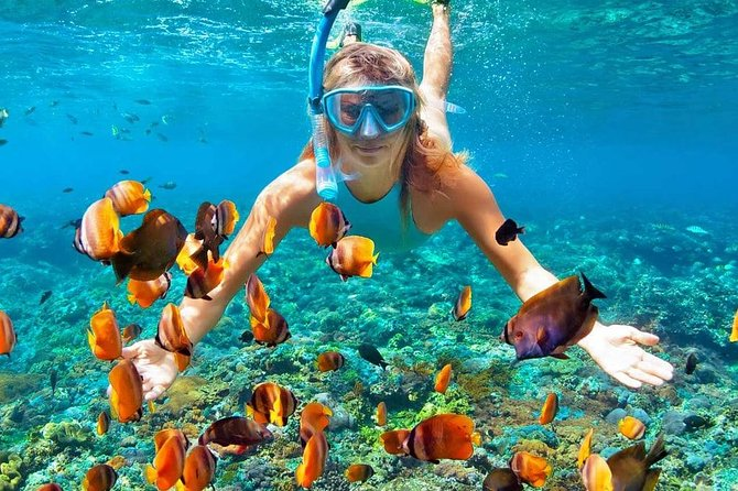 Bali Snorkeling Trip at Blue Lagoon With Lunch and Transfers