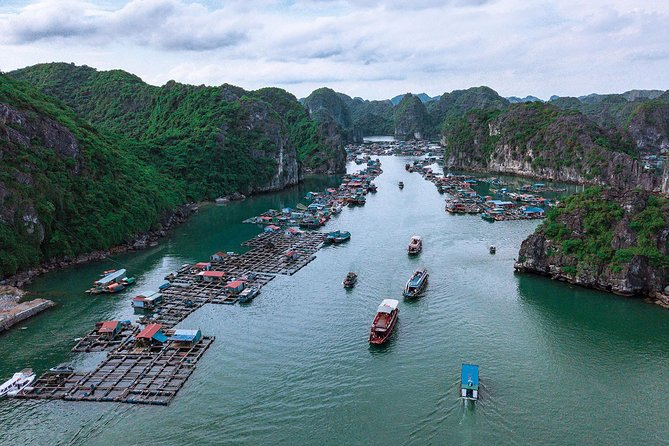 Jade Sail Luxury Day Cruise