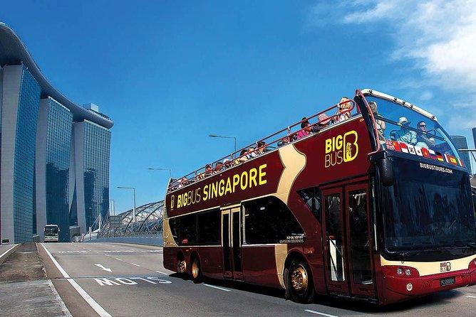 Singapore Big Bus Hop-on Hop-off Tour