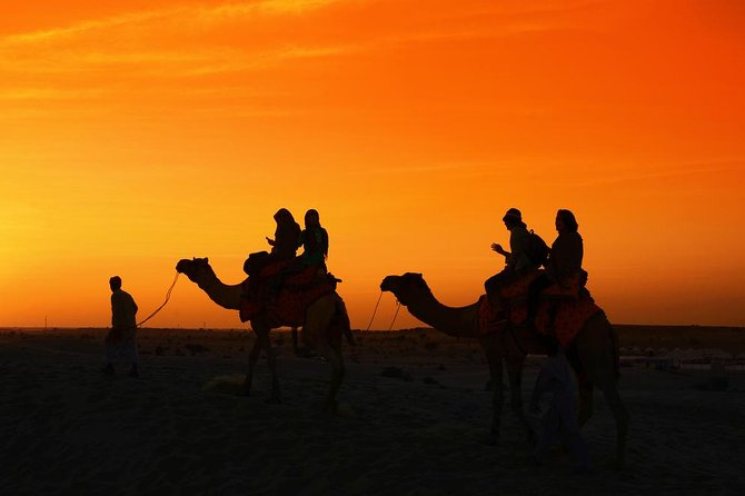 Camel Safari With Dinner In Jaipur - A Guided Experience photo 7