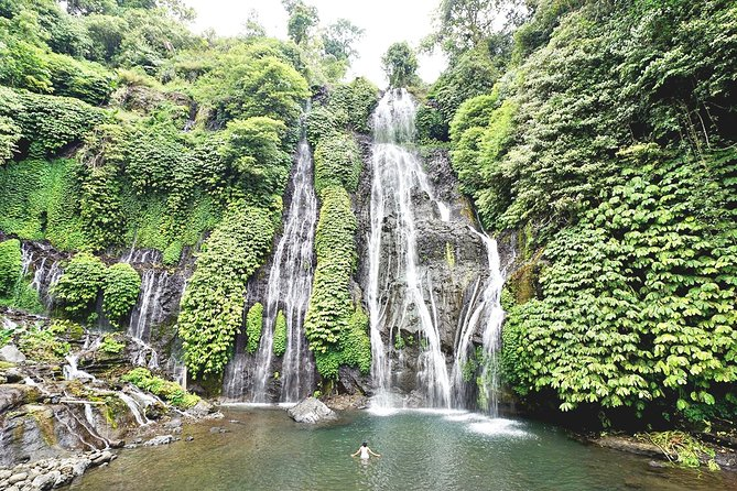 Bali Spring in Your Step: Waterfall, Temple & Holy Spring (with Lunch)