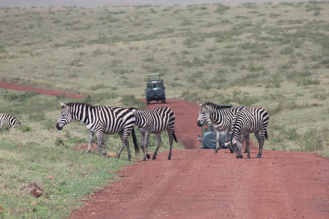 Mid-range African Camping Safari photo 7
