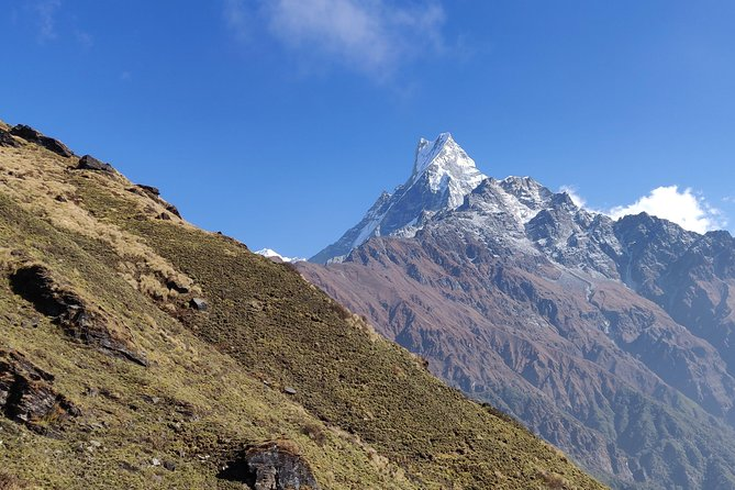 Mardi Himal Trek (A short 8 Days Trek from Kathmandu)