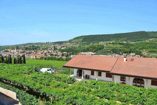 Valpolicella - The wine paradise