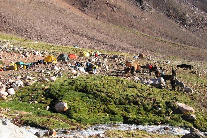 Campamento Guanaquito