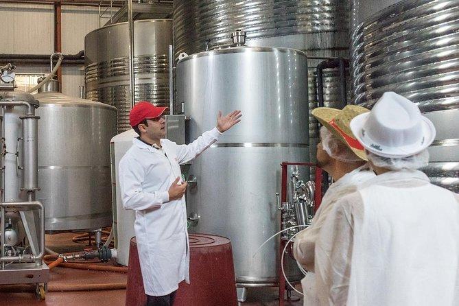 ViP Niagara Falls Canada Wine Tasting Tour With Lunch Break