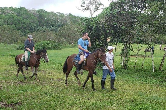 Full-Day Tour El Chato Reserve by horses with Garrapatero Beach in Santa Cruz