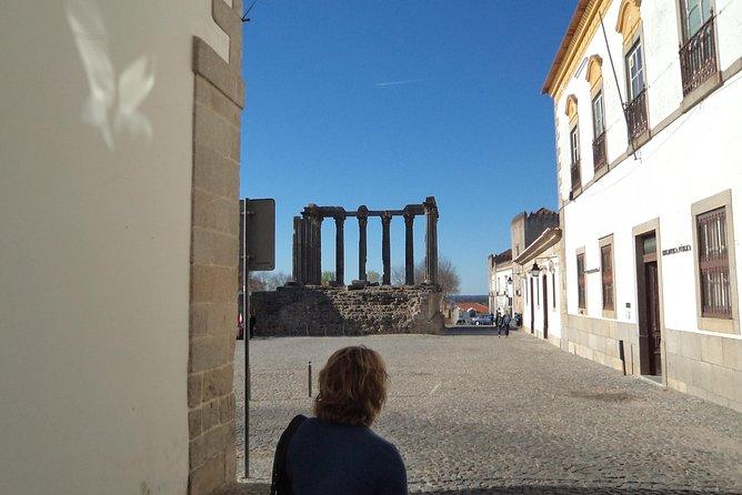 Private van tour from Lisbon to Évora