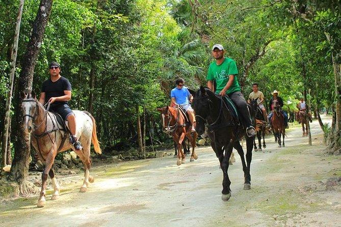 Horseback, Ziplines and Swim in a Cenote