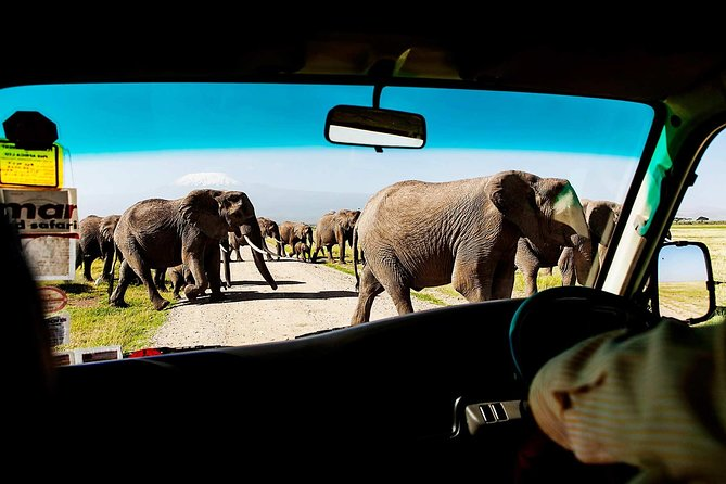 2-Day Amboseli National Park Safari- Daily Departures