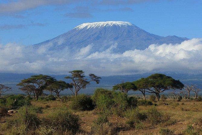 Classic Kilimanjaro Climbs - 7 Days Above the Plains (Rongai) route
