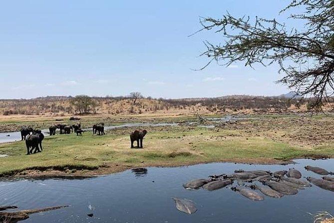 3 Days Safari To Ruaha National Park