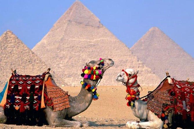 Excursão particular: 8 dias, 7 noites, cruzeiro pelas grandes pirâmides e Nilo de trem do Cairo