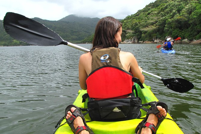 Aquatic Trail Lagoon and Red River by Adrenailha