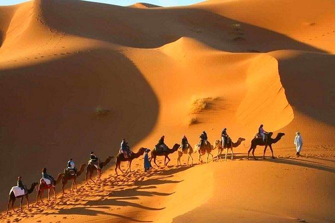 2 Day Desert Tour From Marrakech through the Atlas Mountains & Camel ride