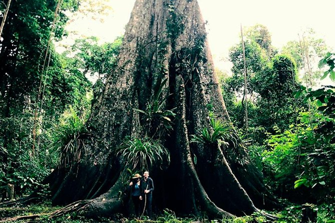 Discover the Iquitos jungle in 2 days