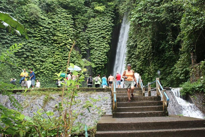 Bali Full Day Car Charter - Beauty of North Bali Tour