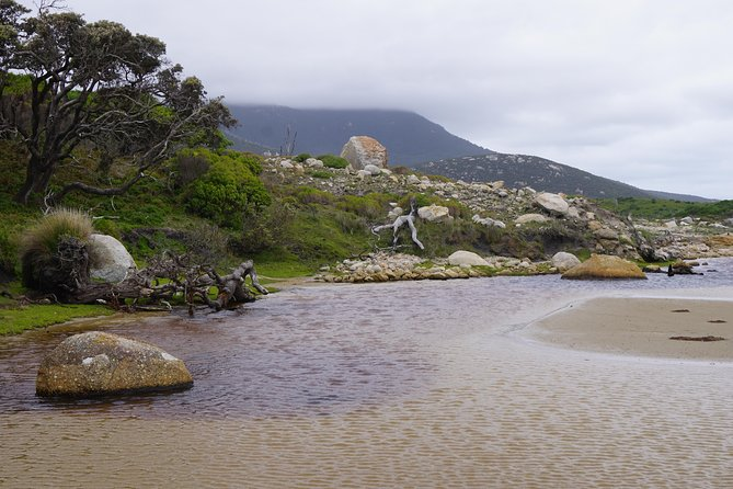 Private Wilsons Promontory Tour (price is per group) photo 8