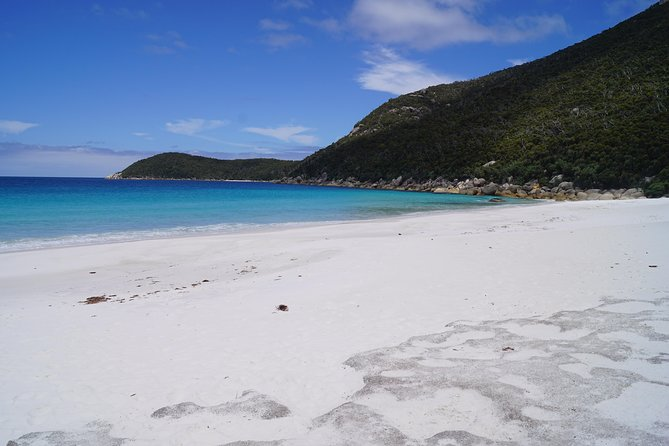 Private Wilsons Promontory Tour (price is per group) photo 9