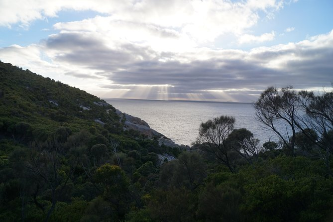 Private Wilsons Promontory Tour (price is per group) photo 10