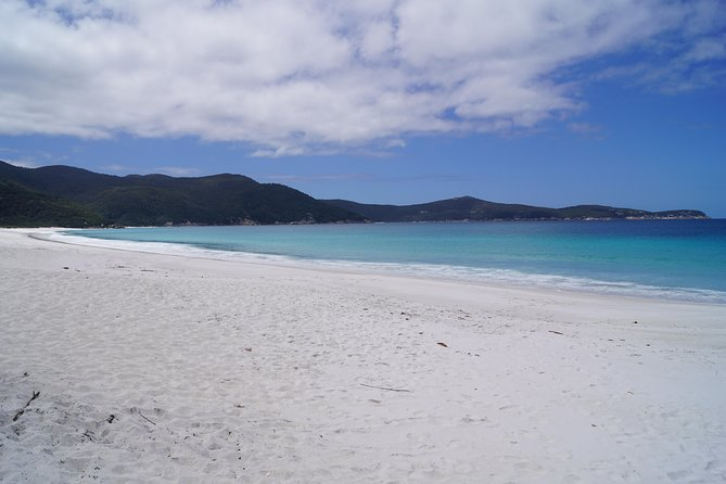 Private Wilsons Promontory Tour (price is per group) photo 3
