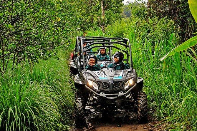 Amazing Mason Jungle Buggies Adventure-Private Return Transport-Include Lunch