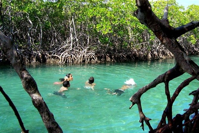 Private Guilligan's, Parguera Sunset & Bioluminiscent bay full day from San Juan