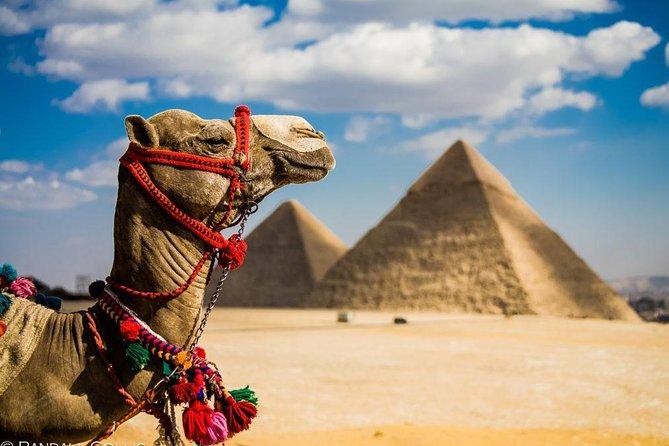 Camel or Horse Riding at The Giza Pyramids Area
