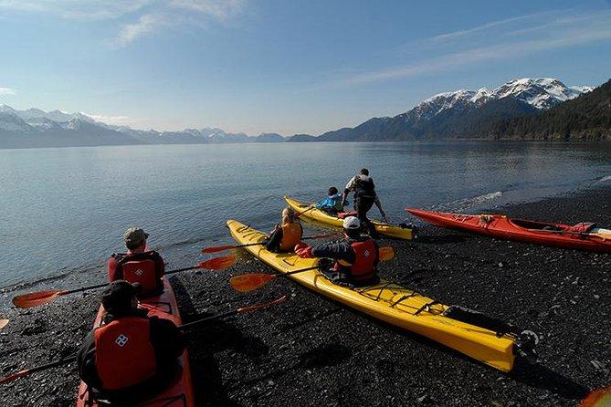 Resurrection Bay Kayaking Adventure