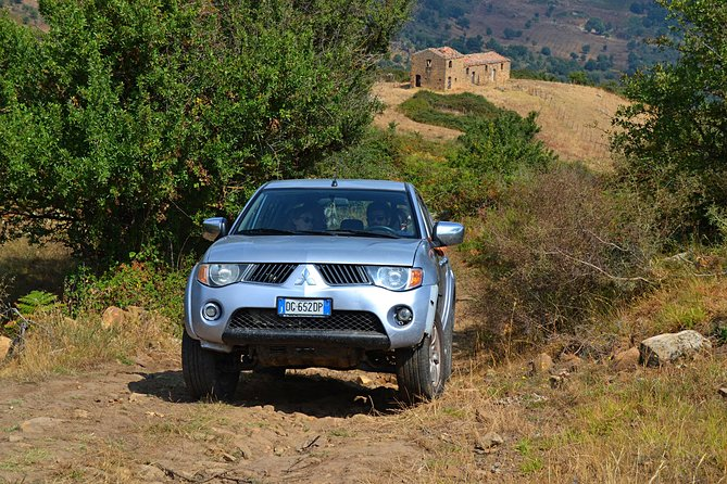 Safari Jeep Wild Adventure
