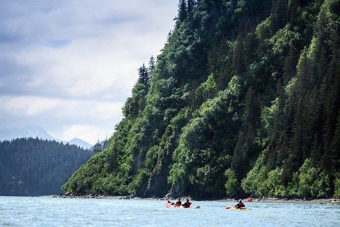 Tonsina Point Kayak & Rainforest Exploration
