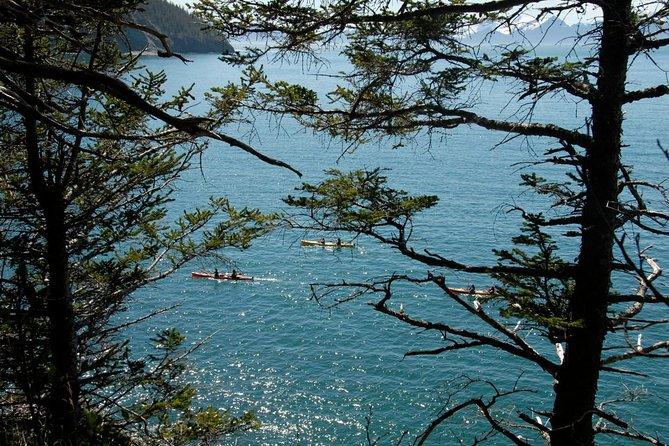 Caines Head Kayak & Hike Combo