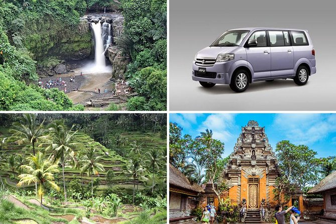 Bali Half Day Car Charter - Ubud Waterfall Tour