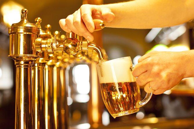 BEER TOUR 5 hrs - Pilsen or Ceske Budejovice Brewery by luxury MB V or Sprinter