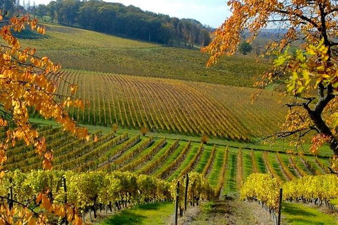 Private wine tour in Bergerac region by EXPLOREO