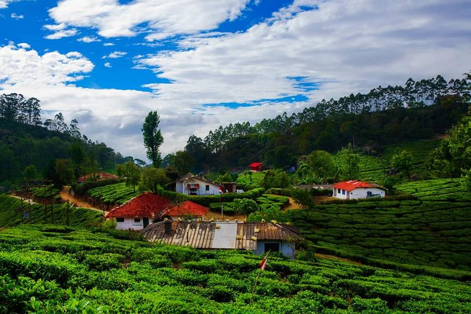 14 Days Golden Triangle tour with enchanting Kerala South India tour
