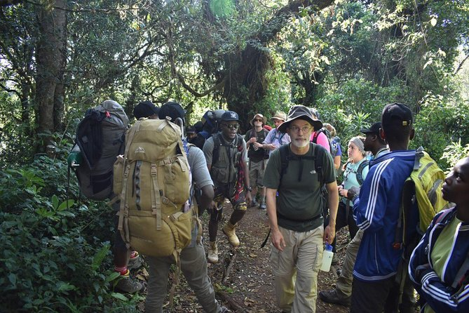 9 Days Mount Kilimanjaro Northern Circuit photo 6