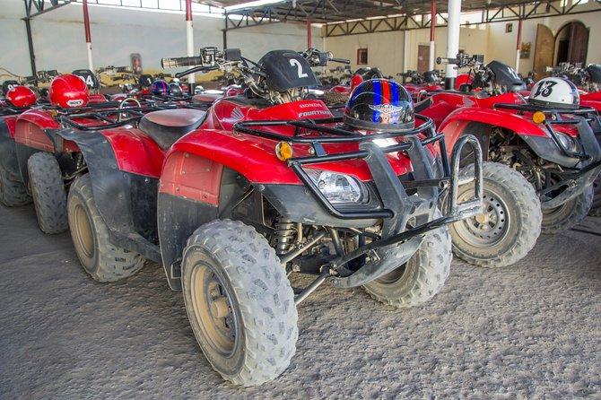 Super Quad & Bedouin Safari and Camel Ride - Sharm El Sheikh