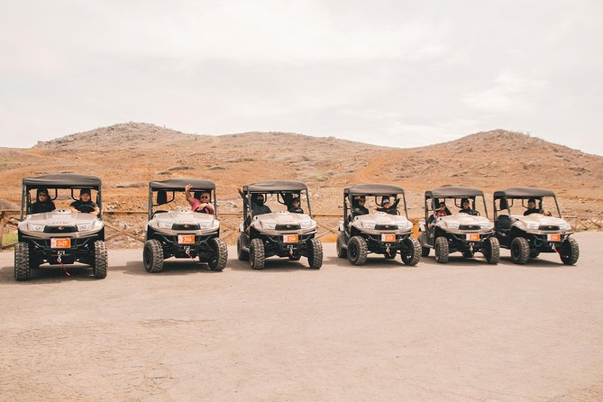 Experience The Island with a UTV tour photo 4