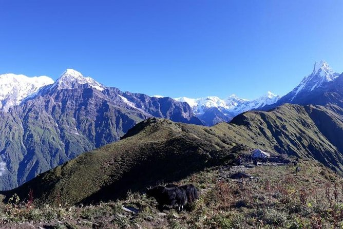 Mardi Himal Trek photo 3