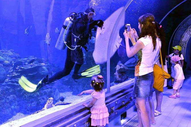 Grand Aquarium - see underwater world without wet . photo 8