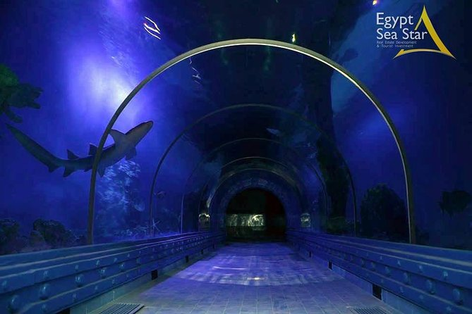 Grand Aquarium - see underwater world without wet . photo 2
