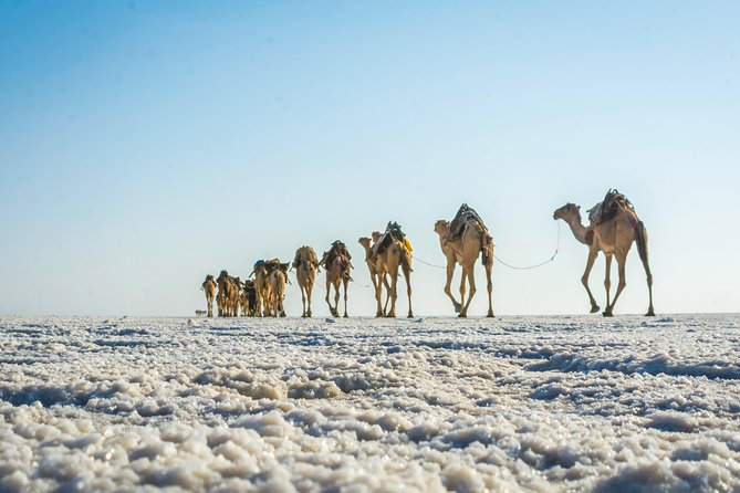 2 Night 3 Days to Danakil Depression Tour photo 8