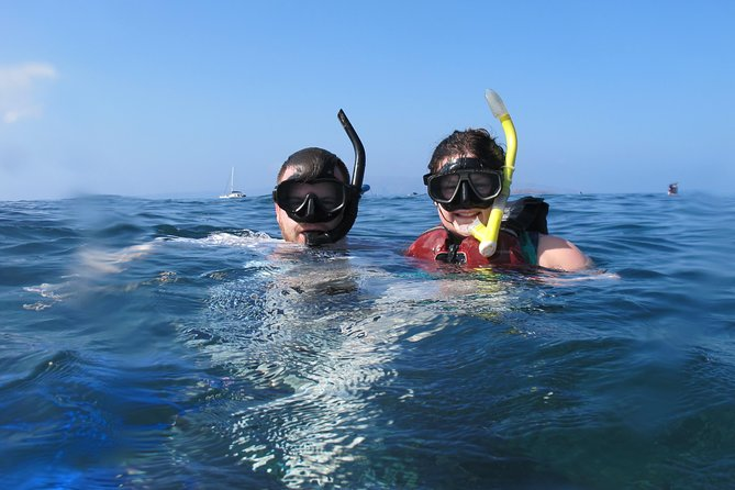 West Maui Whale Watching and Snorkeling Excursion photo 7